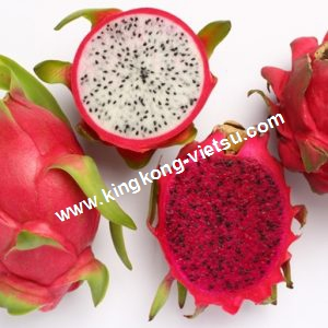 WHITE DRAGON FRUIT / RED DRAGON FRUIT