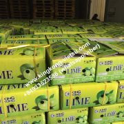 lime-seedless lime/vietnam lime/fresh seedless lime/export lime/lime export/lime of vietnam/fresh lime/ vietnam lime/vietnam fresh lime/vietnam seedless lime